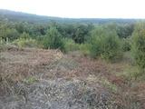 УПИ  в село само на 12 км от Велико Търново