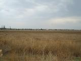 Земеделска земя в землището на Стара Загора