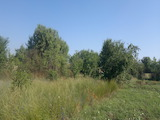 Plot of land near Stara Zagora city