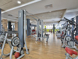 Operating, Fully Equipped Fitness and Spa Complex in Borovo Quarter