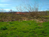 Development land for sale in an ecologically friendly area of the Banya village