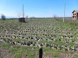 Земеделска земя между Пловдив и Стара Загора