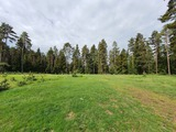 Plot of Land Set 14 km Away From the Ski Resort Borovets