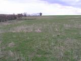 Land for sale near Elhovo