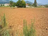 Development land for sale in Thermi