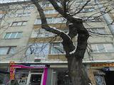 Апартамент до парк Заимов в центъра на гр. София