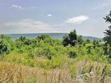 Development land in Rogachevo
