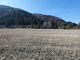 Agricultural land in a beautiful village between Samokov and ski resort Borovets