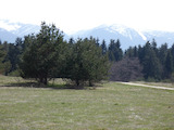 Plots for investment between the town of Samokov and near Borovets