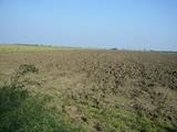 Огромен плот земеделска земя близо до морето